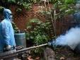 Chủ động phòng chống dịch bệnh do vi rút Zika, sốt xuất huyết