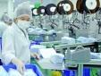 Sớm ban hành quy chuẩn kỹ thuật cho sản phẩm y tế chống dịch Covid-19 để tăng tốc xuất khẩu