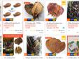 Kỳ lạ: Rao bán lá bàng khô trên mạng
