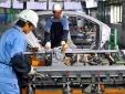 Hai công ty xuất khẩu lao động bị phạt hơn 100 triệu đồng