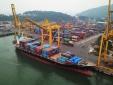 Cảnh báo dấu hiệu vi phạm quy định hàng hóa nhập khẩu có điều kiện
