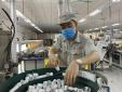 Bộ KH&CN gia hạn lộ trình áp dụng quy chuẩn cho đèn Led