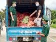 Quảng Ninh: Thu giữ 1,5 tấn chân gà sơ chế xuất lậu sang biên giới