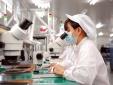 Doanh nghiệp cần đáp ứng tiêu chuẩn chất lượng để theo kịp xu hướng phát triển thị trường EU
