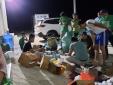Bình Định: Tạm giữ lô hàng lớn hàng chục nghìn sản phẩm không hóa đơn chứng từ