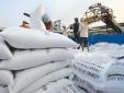 Kỳ vọng phục hồi xuất khẩu gạo Việt Nam những tháng cuối năm 2020