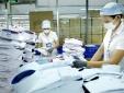 Thực thi các FTA thế hệ mới giúp Việt Nam tiếp cận tiêu chuẩn quốc tế, nâng cao năng lực quản lý