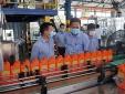 Áp chuẩn cho dầu nhờn: Tăng cường hậu kiểm, mạnh tay với hàng kém chất lượng (Bài 2)