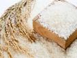 Gạo Việt ngày càng khẳng định thương hiệu trên thị trường quốc tế