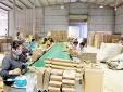 Lý do khiến Công ty TNHH SX và Bao bì Linh Anh áp dụng Hệ thống Quản lý chất lượng, ATTP và Công cụ NSCL MFCA?