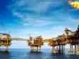 Triển khai tích hợp HTQL chất lượng, môi trường và 5S tại Công ty TNHH Dầu khí Trần Hồng Quân - CN Vĩnh Phúc