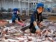 9 tháng, xuất khẩu của khối doanh nghiệp trong nước cao gấp 4 lần tốc độ tăng trưởng chung
