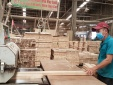 Chủ động mở rộng thị trường, thúc đẩy tăng trưởng xuất khẩu gỗ và lâm sản
