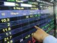 Thao túng giá cổ phiếu, môt đại gia ở Hà Nội bị phạt 600 triệu đồng
