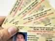 Cảnh báo trang web giả mạo tra cứu thông tin giấy phép lái xe