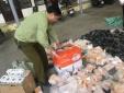 Nhập lậu hàng hóa: Phát hiện 3.500 mỹ phẩm vô chủ tại điểm tập kết
