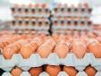 Hàn Quốc tạm dỡ bỏ thuế nhập khẩu trứng