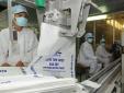 Cục Phòng vệ thương mại: Tiếp nhận hồ sơ đề nghị miễn trừ biện pháp chống bán phá giá sản phẩm đường mía