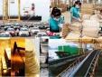 2 tháng đầu năm 2021, cả nước xuất khẩu đạt 48,55 tỷ USD