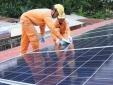 Hà Nội: Sẽ có cơ chế đặc thù cho điện năng lượng mặt trời