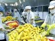 Xuất khẩu nông lâm thủy sản 4 tháng tăng 24,2%