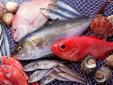 Chuyên gia cảnh báo nguy cơ cho sức khỏe nếu ăn phải cá ươn