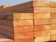 Quy định quản lý nhập khẩu và xử lý sản phẩm gỗ nhập khẩu