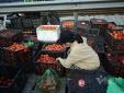Tạo điều kiện cho khâu lưu thông, tránh đứt gãy chuỗi cung ứng nông sản