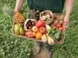 Liên minh châu Âu thông báo dự thảo về kiểm soát các sản phẩm hữu cơ
