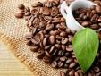 Giá xuất khẩu bình quân cà phê của Việt Nam lên mức cao nhất trong vòng 3 năm
