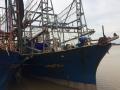 Thanh Hóa đẩy mạnh kiểm tra chất lượng tàu cá đóng theo Nghị định 67