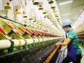 Chính sách năng suất của Nhật Bản: Kinh nghiệm và bài học đối với Việt Nam