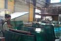 Bên trong lò sản xuất kính chắn gió ô tô giả giá 'rẻ bèo'