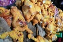 Phát hiện gà, lợn bị cho ăn chất vàng ô nhuộm màu vải sợi