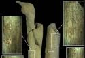 Rùng mình nhóm người cổ đại ăn thịt xác chết, dùng xương làm công cụ