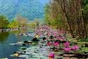 Đừng bỏ lỡ cảnh Suối Yến ở chùa Hương tháng 10 này