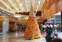 Độc đáo 'cây ngô Noel' làm từ 3600 bắp ở Hòa Bình
