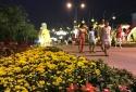 Check-in 'Đường hoa Nguyễn Huệ' lần đầu tiên xuất hiện tại Nhà Bè