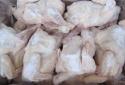 Cúm gia cầm A/H7N9 vẫn 'tấn công' khi ăn gà đông lạnh