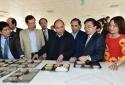 Thủ tướng: Kinh tế lâm nghiệp là lối ra cho Tuyên Quang