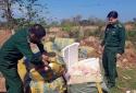 700kg thịt gân gà không rõ nguồn gốc 'suýt' chót lọt vào Việt Nam