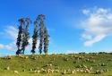 Du lịch 30/4/2017: New Zealand là điểm đến lý tưởng