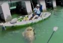 'Quái cá' khổng lồ nặng 250kg cắn câu, suýt làm lật thuyền cần thủ