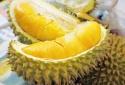 'Thuốc viagra' tự nhiên, an toàn cho quý ông từ quả sầu riêng