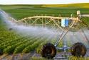 Quy định về tiêu chí chương trình, dự án nông nghiệp ứng dụng CNC