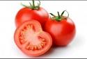 Chất lectins trong cà chua, dưa chuột… có thể gây bệnh Alzheimer?