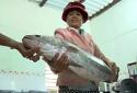 Quảng Nam: Bắt được cá lạ dài gần 1 mét nghi cá sủ vàng quý hiếm