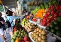 Hà Nội: Đã cấp được trên 80% biển nhận diện kinh doanh trái cây cho các cửa hàng
