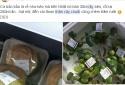 Khúc thân chuối 10cm Việt Nam băm cho lợn, chợ Nhật bán giá 280 nghìn đồng