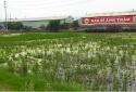 Bắc Giang: 27 cụm công nghiệp chưa có hệ thống xử lý nước thải